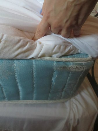 Hillcrest Guest House: TERRIBLE OLD Foam Mattress (with bed bugs)