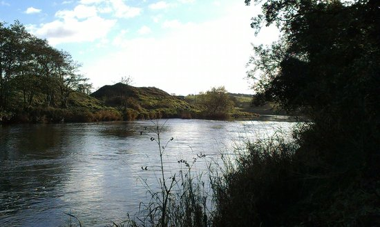 Pine Trees Lodge: East Mayo Waters river Moy