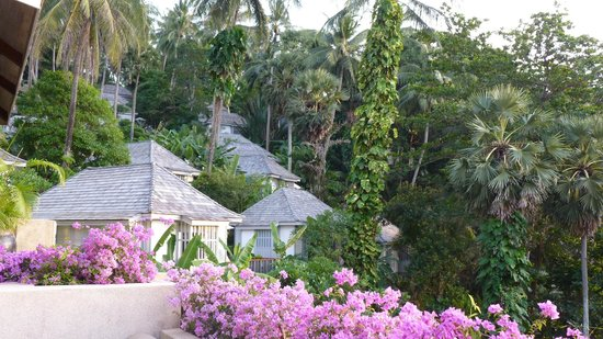 The Surin Phuket: Een paar Hillside cottages.