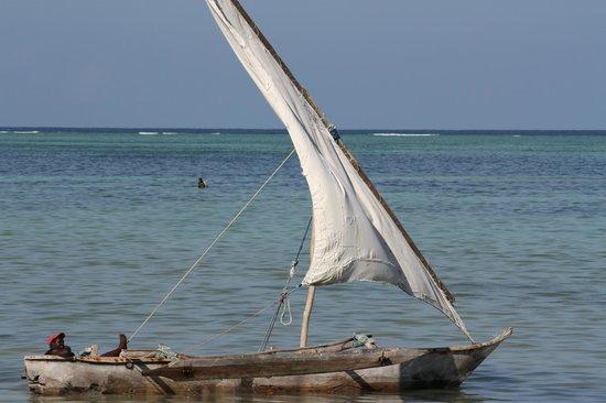 Dream of Zanzibar : De boten van de vissers