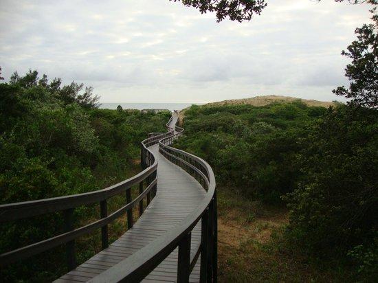 Protea Hotel Karridene Beach: Живописная дорожка к пляжу