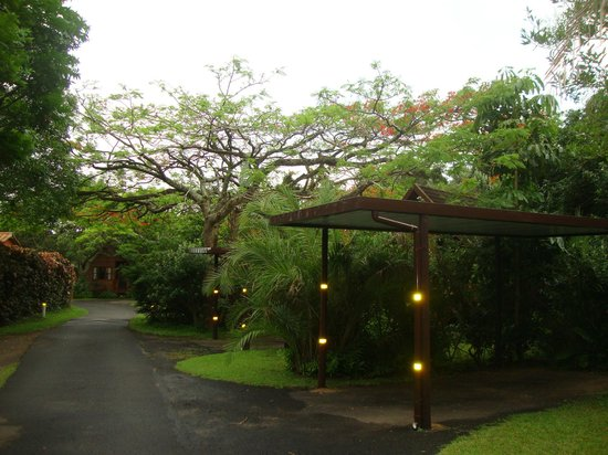 Imvubu Lodge: Территория отеля