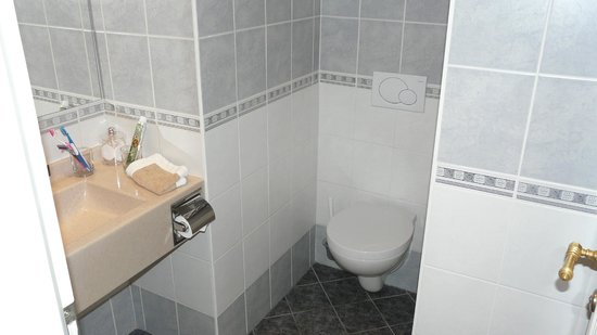 Hotel Klarov Prague: Ванная комната