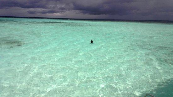 Maafushivaru: View from Water Villa Deck