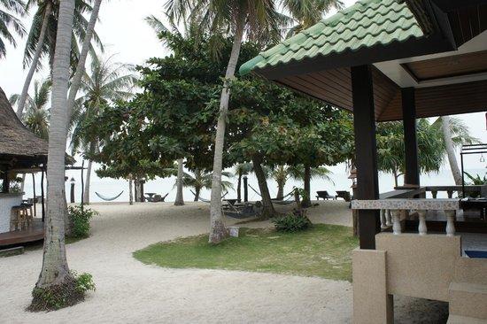 Dewshore Resort : вид на бар и пляж