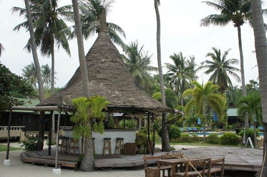 Dewshore Resort : вид со стороны пляжа