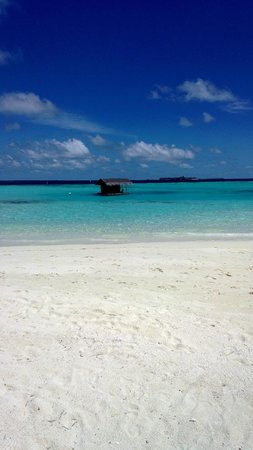 Maafushivaru: Beach Area