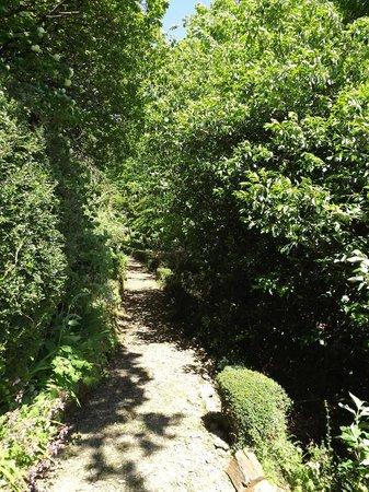 Caerdeon, UK: Coedmor Gardens