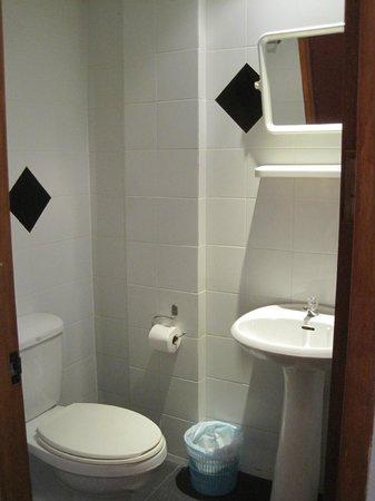 Aquarius Gay Guesthouse and Sauna: Bathroom (no hot water)