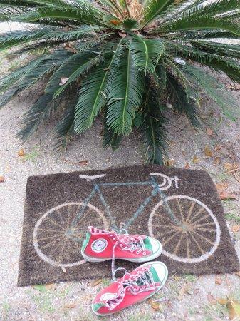 St. Augustine Beach KOA : We love to ride our bikes
