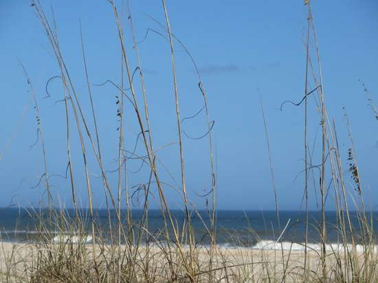 St. Augustine Beach KOA: Anastasia State Park...we had a picnic and loved listening to the sounds