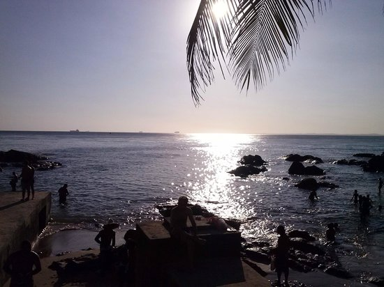 Praia do Porto da Barra : por do sol entre coqueiros