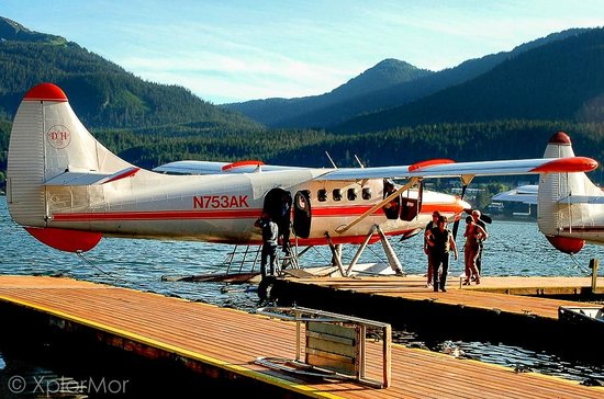 Taku Glacier Lodge & Wings Airways : Wings Airways Plane