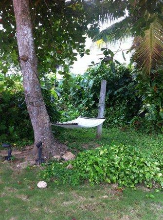 Sandals Royal Plantation: Relax