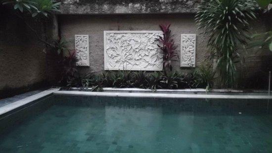 Bagus Hayden Hotel: Acogedor diseño de la piscina