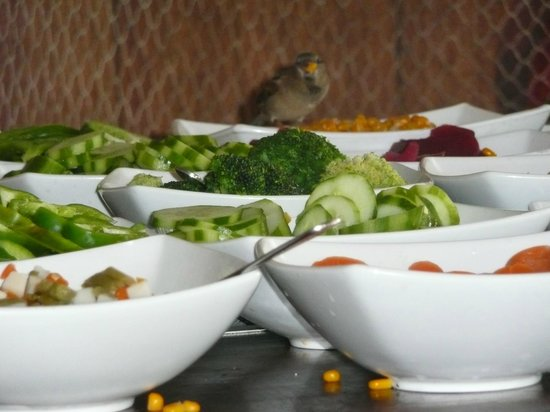 Paradisus Varadero Resort & Spa: bon appétit les moineaux!!!
