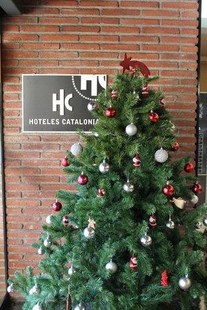 Catalonia Albeniz : на рецепции
