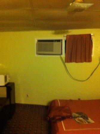 Red Carpet Inn: room heater