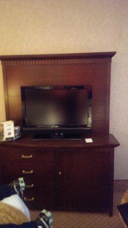 The Roosevelt Hotel : TV 'moderna'...