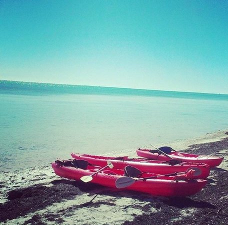 Kayaks rented from Pier 68 @ Long Key State Park