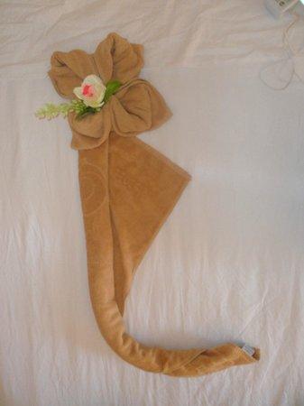 SBH Costa Calma Beach Resort : towel origami