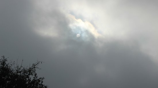 The Pugmark: midday sun in chilly winter