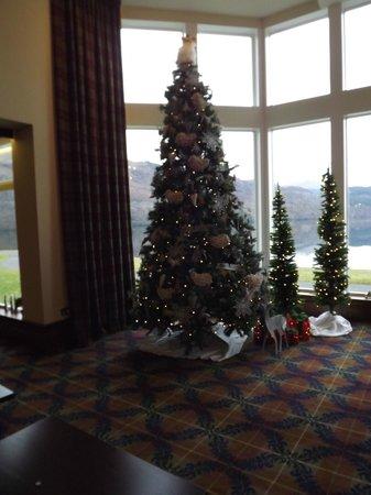 Ardgartan Hotel: Christmas Trees adding to the beauty