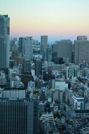 Conrad Tokyo: Our city view