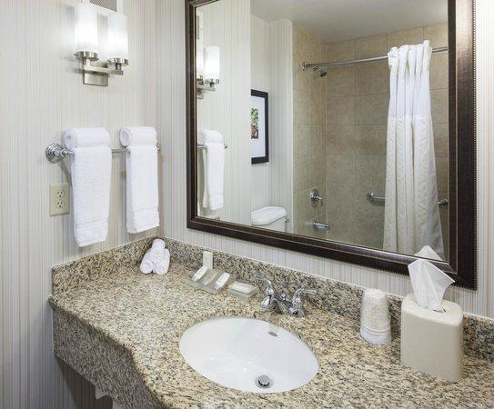 Hilton Garden Inn Dallas Lewisville: Guest Bathroom