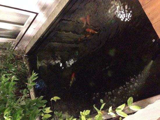Thanicha Healthy Resort Amphawa: Vasche con i pesci rossi