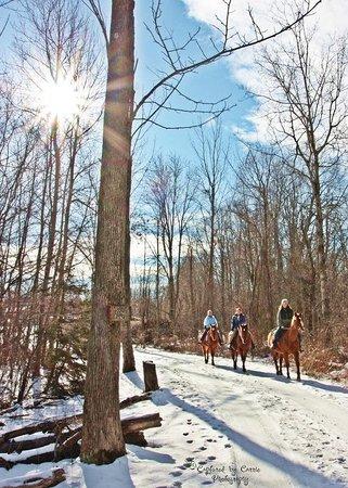 D & K Ranch: Winter Riding
