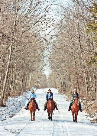 D & K Ranch: Crisp winter day