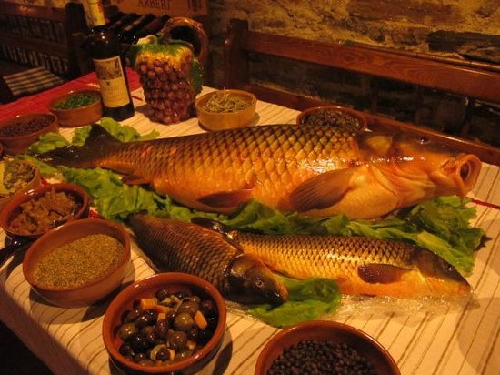 Hotel Tradita Geg & Tosk: Carp fish Shkodra Lake