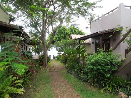 فيلا تاناميرا: Way through resort