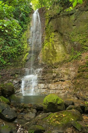 Tiskita Jungle Lodge: Private waterfall