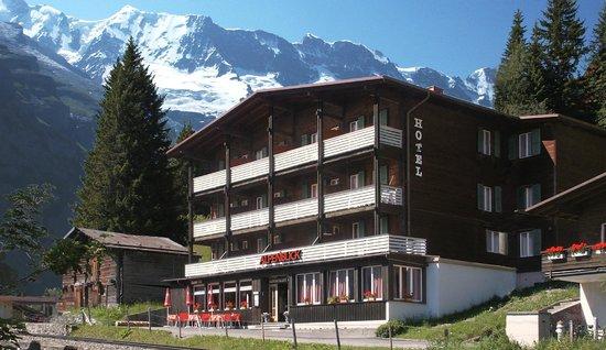 Hotel Alpenblick Mürren: Nice cosy hotel in chalet look