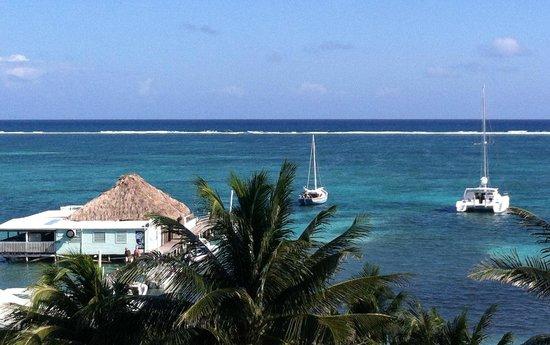 Blue Tang Inn: rooftop view