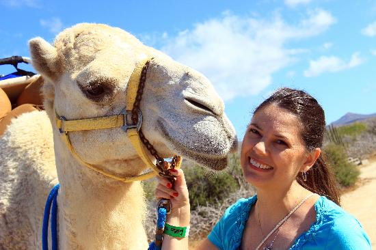 Outback & Camel Safari : Excellent photo ops