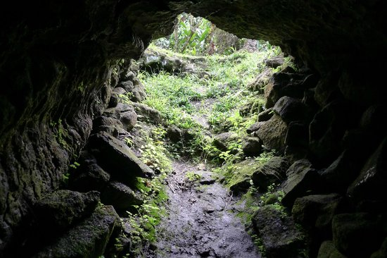 The Savaiian Hotel: the dwarf caves