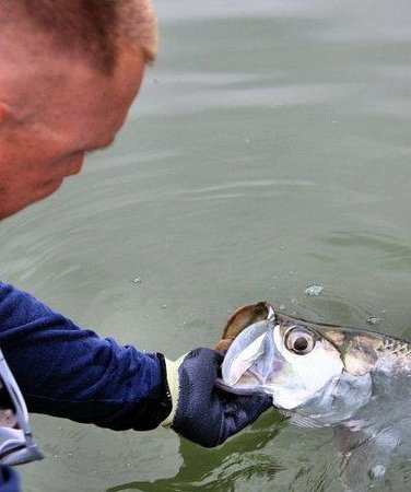 Angling Adventures with Captain Rich Smith: Rich Holding Slver White