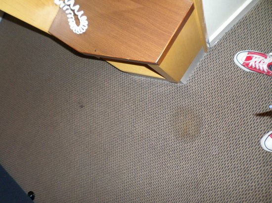 Holiday Inn Express Edinburgh - Waterfront : stain on the carpet