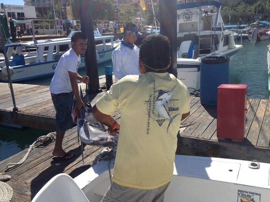 BJC Fishing Charters: 9 Feet!  Wow!