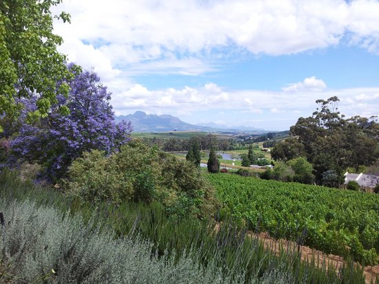 Devon Valley Hotel: Take ten steps and there is another view