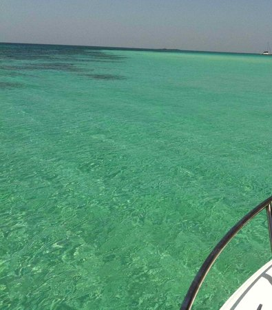 The Boat Club - Day Tours: Cristal Clear Waters