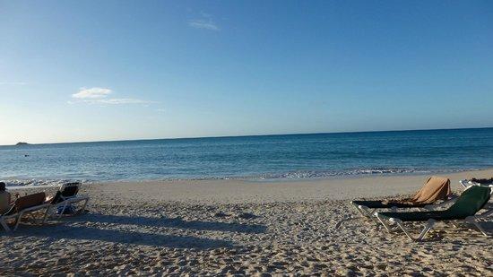 Sandals Grande Antigua Resort & Spa : The Beach