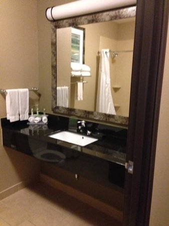 Holiday Inn Express Hotel & Suites Forrest City: Bathroom - Steelers Fan Travels ✨✨