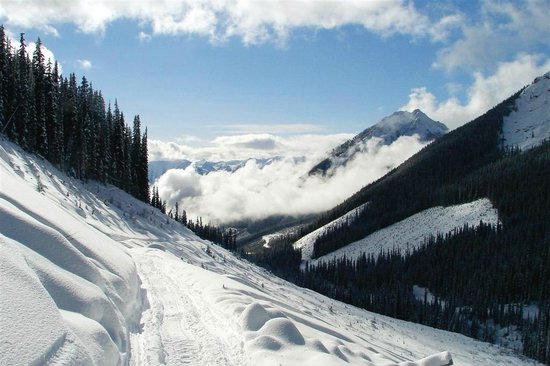 White N' Wild Snowmobile Tours: Surrounded by the spectacular Rocky Mountains.