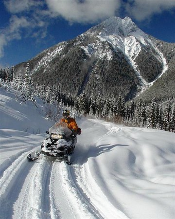 White N' Wild Snowmobile Tours: Suitable for all levels of ability.