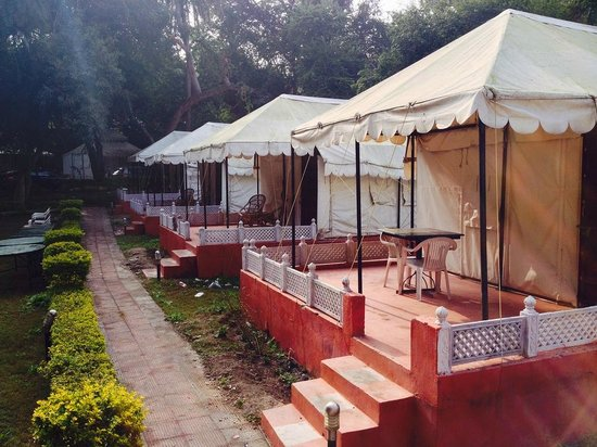 The Aravali Tent Resort: Tents which we stayed