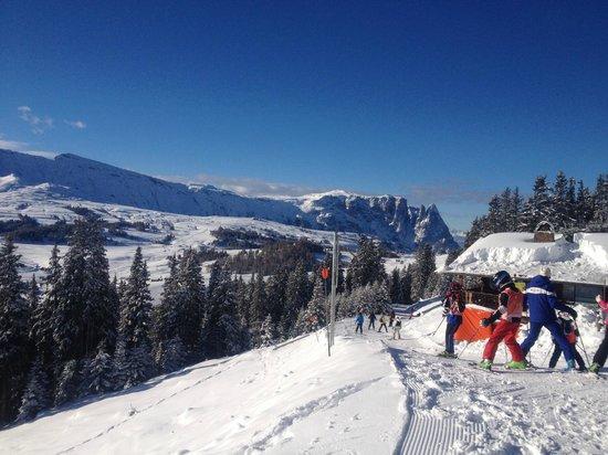 Hotel Adler Dolomiti Spa & Sport Resort: vista dall'alpe di susi